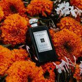 Jo Malone 祖马龙:英国高端香氛品牌 无门槛送青柠罗勒与柑橘香水9ml+自选好礼
