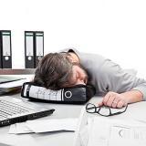 Donkey Power Nap 办公室午睡枕