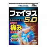 Hisamitsu 久光制药 消炎止痛膏药贴5.0 35枚