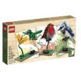 乐高 LEGO Ideas 21301 鸟类模型套装