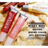 BURT'S BEES 小蜜蜂 Lip Shine 果冻唇蜜