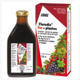 Salus莎露斯 法国版铁元 纯植物补铁口服液 500ml 2瓶