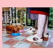 Jomashop品牌特惠:古馳Gucci時尚鞋履、太陽鏡等僅3.3折+最高還可滿減$50!