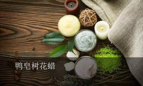 孕妇能用的化妆品_鸭皂树(ACACIA FARNESIANA)花蜡在护肤化妆品中的功效与作用-是什么 ...